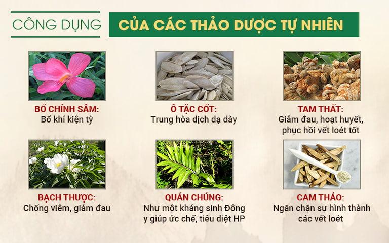 Một số loại thảo dược được sử dụng trong Sơ can Bình vị tán
