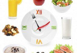 Ăn uống đúng giờ giúp quá trình tiêu hóa thức ăn của dạ dày hiệu quả hơn